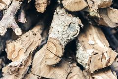 Dry cut logs firewood, wood. For home heating stock photography