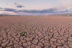 Dry dam Stock Photos