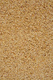 Dry dash aggregates coating. Background made of a closeup of a wall with a dry dash aggregates coating royalty free stock photography