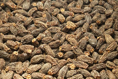 Dry Dates Stock Images