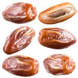 Dry dates isolated on white. Collection. Royalty Free Stock Photos