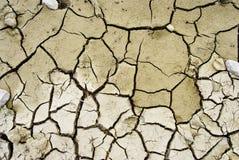 Dry desert Stock Photos