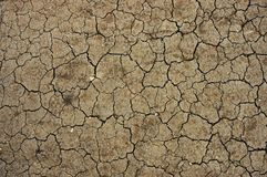 Dry desert Royalty Free Stock Images