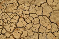 Dry. Desert floor, cracked ground Stock Photos