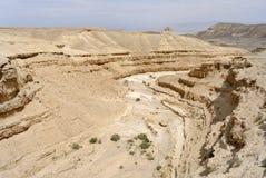 Dry desert gorge. Stock Images