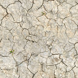 Dry desert land with cracks Stock Image