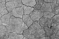 Dry desert soil. Black and white dry desert ground Stock Images