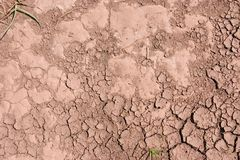 Dry dirt. Dry mud with cracks in the gravel Stock Photos