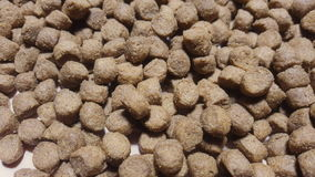 Dry dog or cat food rotate on table. stock video
