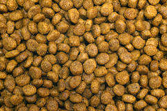 Dry dog food Royalty Free Stock Image