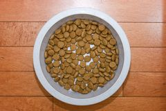 Dry dog food Royalty Free Stock Images