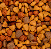 Dry dog food. Dry all in one dog food or snack Royalty Free Stock Photo