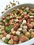 Dry dog food in a big bowl Stock Image