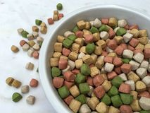 Dry dog food in a big bowl Royalty Free Stock Photo