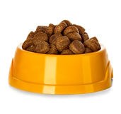 Dry dog food in bowl isolated Stock Image