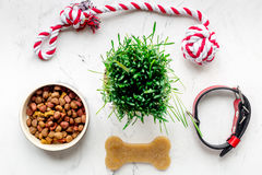 Dry dog food in bowl on stone background top view Royalty Free Stock Images