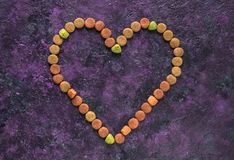 Dry dog food in heart shape on the table stock image