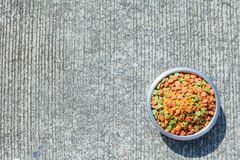 Dry dog food in in the stainless steel bowl Stock Images