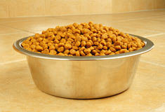Dry Dog Food in a Stainless Steel Bowl Stock Photography