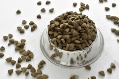 Dry dog pet food bowl Stock Image
