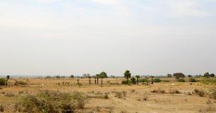 Dry Season Myanmar Landscape Royalty Free Stock Image
