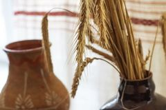 Dry ears of wheat in a flowerpot on the table close up. Copy space stock photos