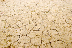Dry earth. In red yellow,many  small gully can be seen Royalty Free Stock Photo