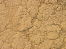 Dry earth. Use for background royalty free stock photography
