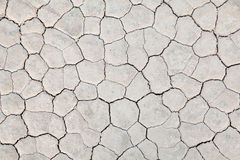 Dry earth background Stock Photos