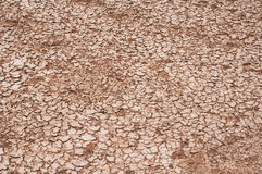 Dry earth. Background of dry cracked earth Stock Image