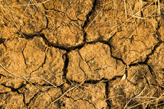 Dry earth ground texture Stock Photography