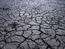 Dry earth Stock Photos