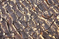 Dry earth in the Sahara desert. Royalty Free Stock Photos