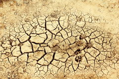 Dry earth. The sun beat down mercilessly on the dry earth Stock Photo