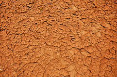 Dry earth texture Royalty Free Stock Image