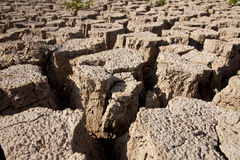 Dry earth texture. Global warming concept stock image