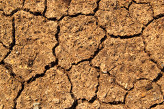 Dry earth texture. At thailand royalty free stock photos
