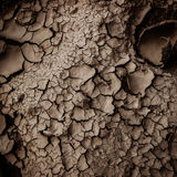 dry earth texture background Royalty Free Stock Images