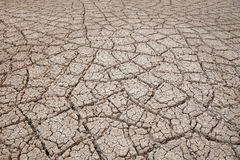 Dry earth texture Stock Photos