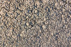 Dry fall ground with cracks royalty free stock photography