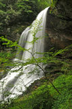 Dry Falls in North Carolina in Spring Stock Images
