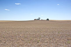 Dry farm during the drought Stock Photos