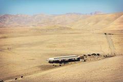 Dry Farm Field Royalty Free Stock Photos