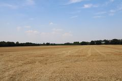 Dry farmers field during summer heatwave royalty free stock photos