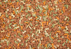 Dry feed for pets Stock Image