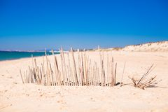 Dry fence of reeds on a deserted coast in Faro, Royalty Free Stock Photography