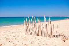 Dry fence of reeds on a deserted coast in Faro, Royalty Free Stock Photos