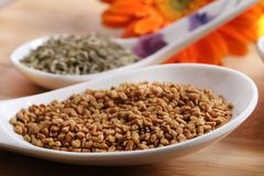 Dry fenugreek seeds Royalty Free Stock Photos