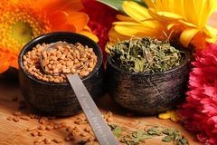Dry fenugreek seeds and leaves Stock Image