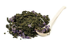 Dry fermented tea from fireweed Stock Photo